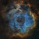 Rosette Nebula in Hubble Palette (NGC2237),                                Willem Jan Drijfhout