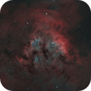 NGC 7822 in HOO,                                Tim Gillespie