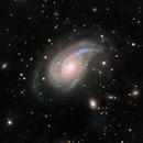 NGC 772 soft binning version,                                Shinji Nezu