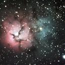 Trifid Nebula M-20,                    Dennis Recla