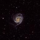 M101,                                Mareko