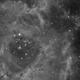 Rosette nebula,                                milosz