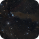 The Van Den Bergh 152 nebula complex in Cepheus,                                Francesco Meschia