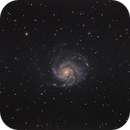 M101,                                Thomas