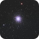 Cropped M13,                                Pam Whitfield