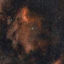 Nebulosa Pellicano,                                Antonio Grizzuti