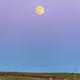 Full Moon rising in the Belt of Venus,                    Giuseppe Petricca