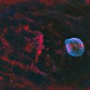 The Dolphin Nebula Sh2-308 and Sh2-303 - 2 panel mosaic in HO-LRGB,                                equinoxx