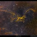 Sh2-114, the Flying dragon Nebula,                                Metsavainio