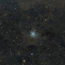 NGC 7023 (Nébuleuse de l'Iris,                                Isometric