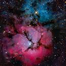 Trifid nebula w big scope,                                Mirko M