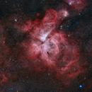 Eta Carina Nebula,                                Paul Ng