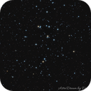 The Beehive Cluster - M44 - NGC 2632,                                Demetris Psomas