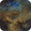 NGC 2237 - Rosette Nebula - Pillars 2,                                Kyle Pickett
