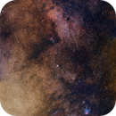 Bright Emu (vertical panorama),                                Todd