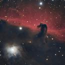 Horsehead Nebula - IC434,                                Awni Hafedh