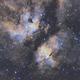 IC 1318 - Butterfly in Cygnus SHO,                                John Hosen
