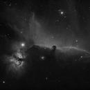 Horse head Nebula in Ha,                                Aaron Hakala
