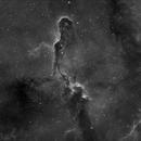 IC1396 - Elephant Trunk  Nebula,                                John E.