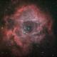 NGC 2244 Rozette Nebula Ha OIII RGB,                                Alex Iezkhoff