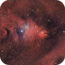 NGC2264 - Cone and Christmas Tree,                                Joe Alexander