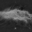 NGC1499  in Ha,                                  paolobar