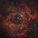 Nebulosa Rosetta,                                Paolo