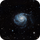 M101,                                RAMON ESPAX