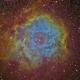 Rosette Nebula,                                Manuel