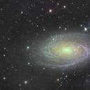 M81,                                SamAndrew