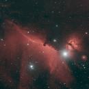IC 434,                                David Johnson