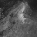 Pelican Nebula (C 5070 and IC 5067),                                Martin Magnan