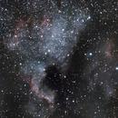 NGC7000 - North America Nebula,                                PghAstroDude