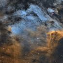 Pelican Nebula SHO,                                wjf56