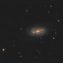 NGC 2903 - Bortle 8 version,                                Daniel Hightower
