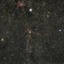 Schwan / Cygnus,                                mattew