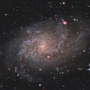 M33 in LRGB and LHaO3RGB, T250 f/4  /  ATIK ONE  / AZEQ6,                                Pulsar59