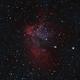 Wizard Nebula Bicolor,                                  Anderson Thrasher