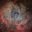 NGC 2237 NGC 2244 NEBULOSA ROSETTA IN UNICORNO,                                MarcoFavuzzi