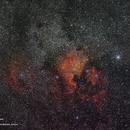 North America Nebula and Pelican Nebula,                                David Cocklin