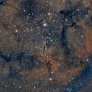 Nebulosa Trompa de Elefante IC-1396,                                Carlos Ledesma