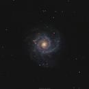 M74 (NGC628) Phantom Galaxy,                                brad_burgess