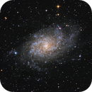M33 Triangulum Galaxy,                                Jonathan W MacCollum