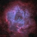 Rosette Nebula Natural Color Version,                                Chris Plonski