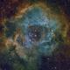 Rosette nebula SHO and RGB,                                Luigi