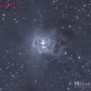 Caldwell 4 the Iris Nebula,                                Jeff Padell