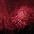 Flaming Star Nebula,                                  Omar Martinez