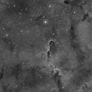 Elephant's Trunk Nebula,                                Julien Lana