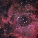 NGC 2237,                                Ric