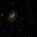 NGC4395,                                Ray Heinle